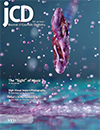 JCD Volume 29 • Issue 1  Spring